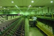 planta-en-lurin-012